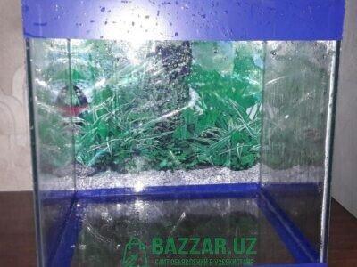 Прoдaется аквариум куб 40 литрoв. 35.5 х 34 х 34 с