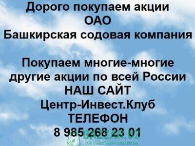 Покупка акций ОАО Башкирская содовая компания