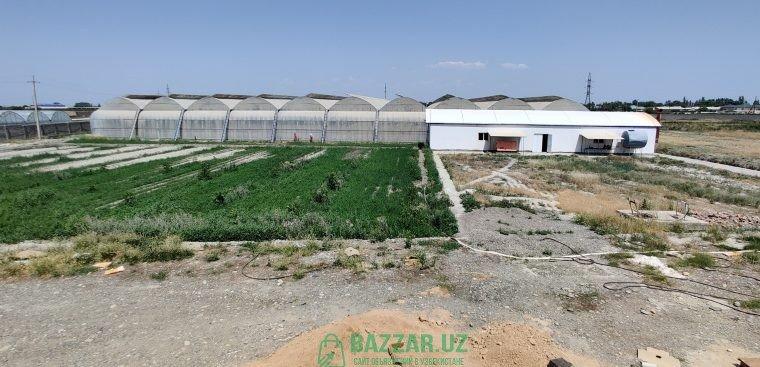 Сельскохозяйственный комплекс