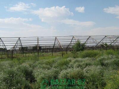 Продается земля общая пл. 4 гектаров с теплицей. 1