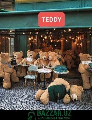 Teddy orginal supper skidka